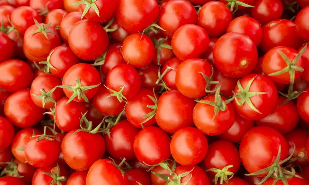 Tomaten bewaren doe je zo!