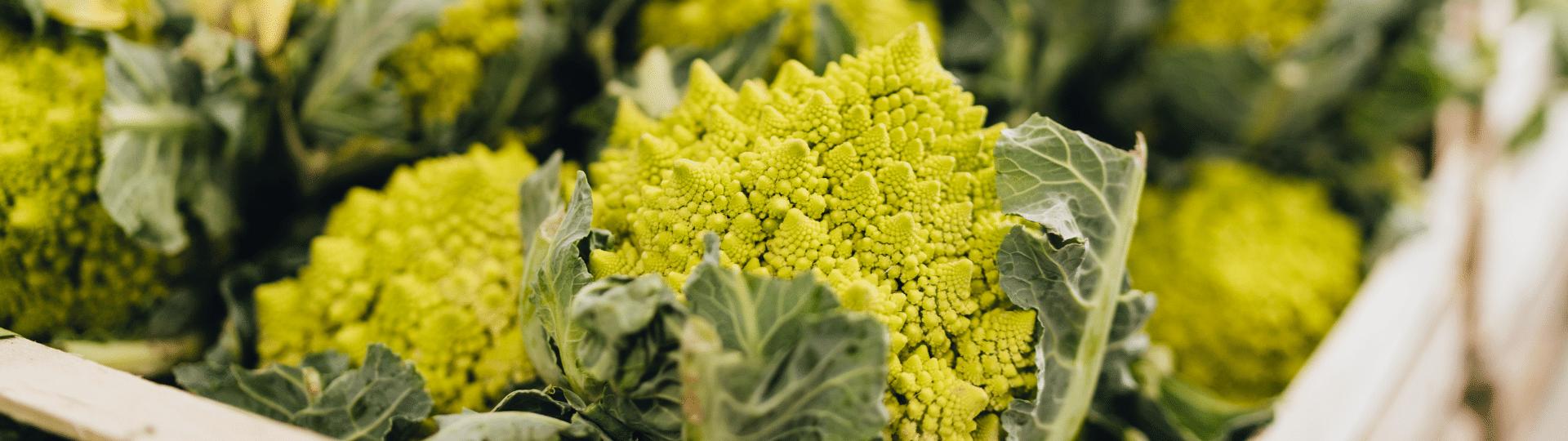 Wat is bio? Biologische producten bij BE O Markt